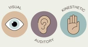 Learning styles visual auditory kinesthetic
